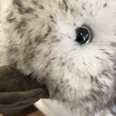 Histoire d'Ours peluche pinguino grande