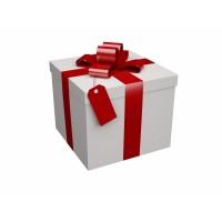 Articoli regalo (3)